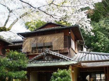 yoshimizu%20006.jpg