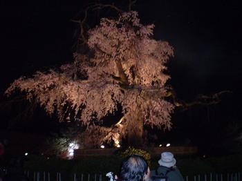 yoshimizu%20032.jpg