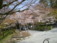 yoshimizu%20038.jpg